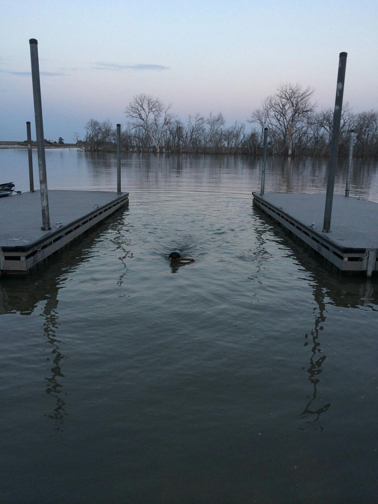 Nebraska fishing report bassin barry for Plenty of fish lincoln ne
